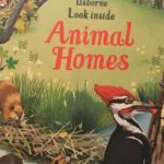 Front Cover of Usborne FIrst Look: Animal Homes